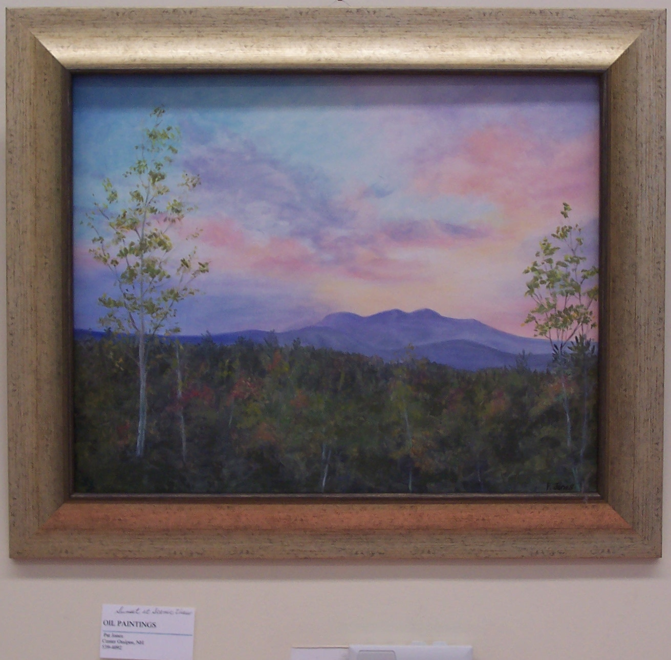 Oil Paintings By Pat Jones Will Be On Display At The Ossipee Public Library Through The Month Of