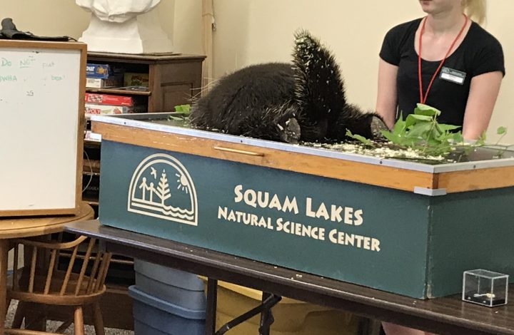 Squam Lakes Science Center Animal Sounds Program photos